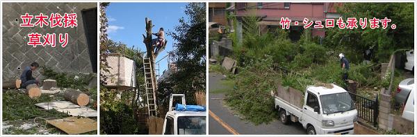 庭木伐採、立木の枝落し、草刈りの中京園 / 即日・当日